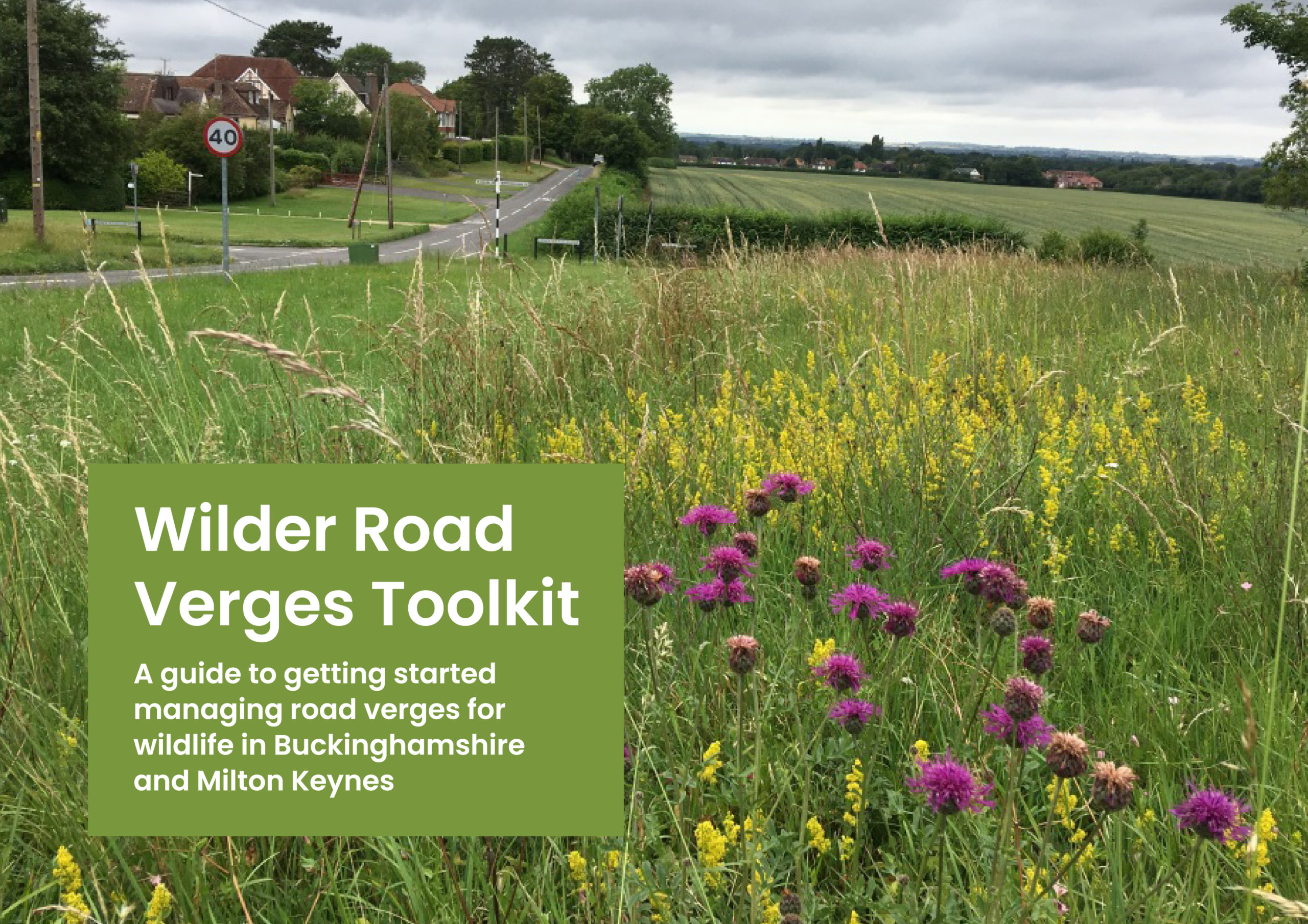 Wilder Road Verges Toolkit cover